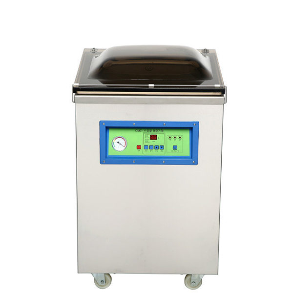 DZ500 vacuum packing machine for vegetable bread fish and seafood
